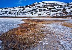 Påske / Easter 2012 (#3) (Krogen) Tags: nature norway landscape norge natur norwegen april noruega scandinavia krogen landskap noorwegen noreg skandinavia oppland synnfjellet nordreland olympusep2