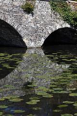 Waverley Abbey (4) (Ian Macfadyen) Tags: bridge lake reflection waterlillies waverleyabbey