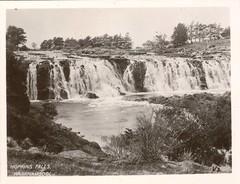 V. 3. Hopkins Falls, Warrnambool (c.1950s) (pellethepoet) Tags: waterfall australia victoria photograph warrnambool hopkinsriver hopkinsfalls