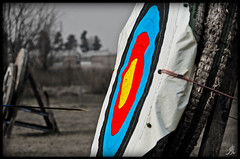 Photos and Arrows (Alessandro.Giorgi) Tags: white black field photo saturated focus arch shot mark centro picture straw style competition center tip punta target arrows campo shooting balance strength arrow shooter trick mira flap arco stile challenge aletta paglia freccia frecce flaps seeks alette gara desatured unsaturated concentrazione desaturato sfida bersaglio saturato arciere bilanciamento tiratore centroarco archarcher