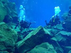 Diving Silfra 18