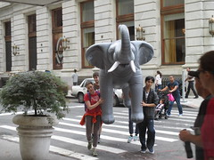 Toting a Grey Inflatable Pachyderm - Elephant Balloon 9873 (Brechtbug) Tags: thanksgiving 58th street plaza new york city nyc elephant up animal animals youth balloons toy toys grey zoo hotel day near manhattan balloon pachyderm culture like ground front blow gargoyle midtown inflatable bubble macys ritual but 20 float avenue smaller 5th enthusiastic blowup closer somethings 2014 toting 05242014