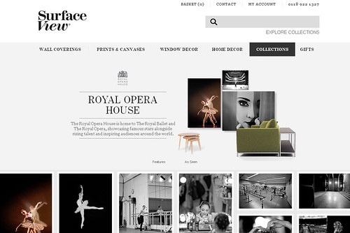 Surface View, an online service for the creation of bespoke, home interior products