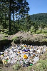 Desechos Slidos (Sergio Tohtli) Tags: naturaleza tree nature trash basura rbol vidrio plstico impactoambiental residuos environmentalimpact desechos inconciencia