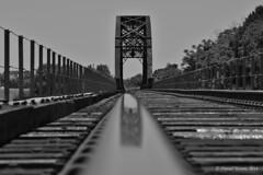 Bridge Reflection, Black and White (DanielTestonPhotography) Tags: railroad bridge bw white black industry train river nikon highway texas 21 tx country tracks transportation brazos