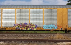 Tars (quiet-silence) Tags: graffiti graff freight fr8 train railroad railcar art tars aa aacrew autorack ns norfolksouthern