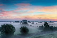 """""""Ersa"""" (summer morning) (otto.hitzegrad) Tags: nebel bume sommermorgen morgenrot nebelstimmung summer morning himmel wolken wiesen weiden hochsitz gttin des taues ersa"""