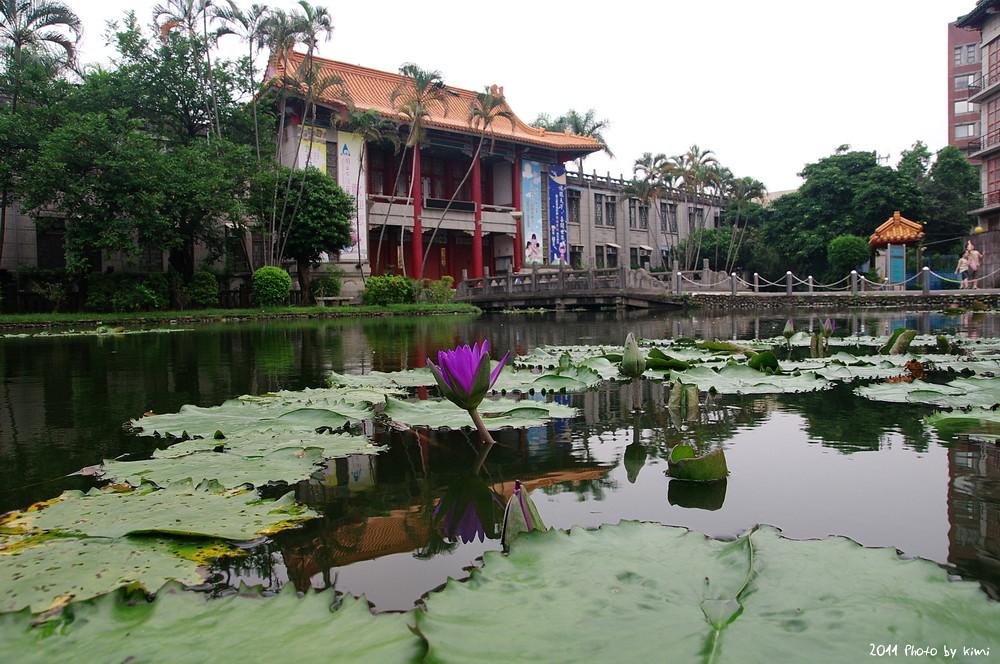 印象植物園