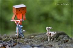 DANBO 42#365/11 (unaisa) Tags: mountain green nature bike toy photography 50mm robot iso200 photo bmx dof bokeh f14 sony bicicleta desenfoque bici alpha cabra playmobil juguete danbo apsc sal50f14 danboard unaisa nex3 laea1