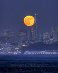 Yellow Moon [5_032356-8tm]