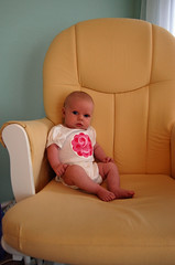 Scout 2 months - chair 01