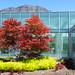 Looking at the library - Brigham Young University Library, Provo, Utah