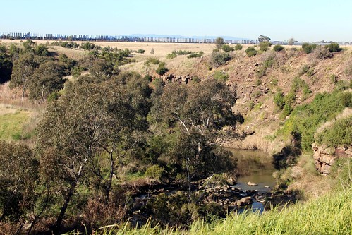 Merri Creek Gorge - Galada Tamboore Grasslands, Campbellfield
