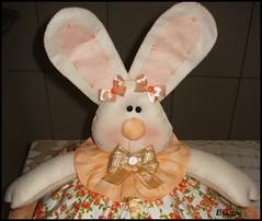 cobre bolo rostinho da coelha (Eliza de Castro) Tags: cobrebolo decoraçãodecozinha kitdecozinha cobrebolovaquinha cobrebolocoelha