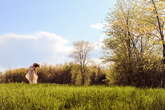 We are alive. (MariePierEmma) Tags: blue trees summer sky woman cloud brown sun sunlight white tree green nature girl field grass forest hair photography freedom spring dress wind may alive breeze flimsy leafs campagne fort