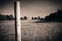 Barbed (T-3 Photography) Tags: wood field rural canon fence wire md post bokeh farm maryland antietam friday 1740mm sharpsburg 5dmarkii