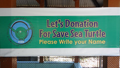 Donation Sign at Serangan Island Turtle Conservation Centre, Bali, Indonesia (dannymfoster) Tags: bali sign indonesia turtle serangan seranganisland