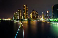 IMG_0313 (SudeshRx) Tags: city nightphotography bridge flowers summer rose japan river japanese tokyo nightcruise skytree ookawabata japanesetradition slowshutterphotography