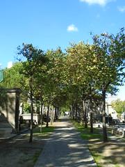 Montparnasse cemetery @ Paris (*_*) Tags: paris france europe city autumn fall montparnasse sunny cemetery tomb cimetiere