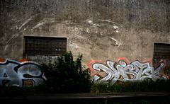 trackside graffiti germany (wojofoto) Tags: germany deutschland duitsland graffiti trackside railway spoorweg wojofoto wolfgangjosten mister