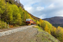 Autumm in Norway (Einar Schioth) Tags: autumm autummcolors trees tree train railroad nsb sky day canon clouds cloud nationalgeographic ngc norway norge nature nordland landscape photo picture outdoor einarschioth