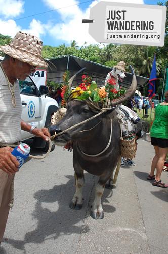 Maila Ta Fan Boka Festival 12