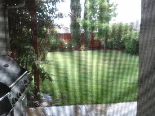 Wet outside