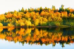 Autumn Colours (Glass-Eye Photography) Tags: bowland england lake lancashire landscape nikon reservoir stocks water