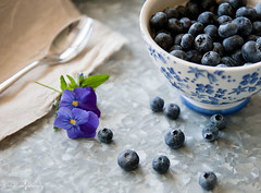 Blueberry - Lovin (Kim Klassen) Tags: blue stilllife blueberries nikon2470 fridayalready galvanizedtryfromwinners bowlfromwinners