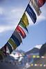 MF11-GENERAL-Banner_Flags1-CREDIT-Jennifer_Koskinen