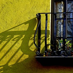 shadow on chartreuse (msdonnalee) Tags: cortina window architecture mexico ventana iron balcony fenster curtain wroughtiron chartreuse finestra mexique janela ironwork stucco mexiko messico venster finetre  photosfromsanmigueldeallende fotosdesanmigueldeallende plantsonabalcony
