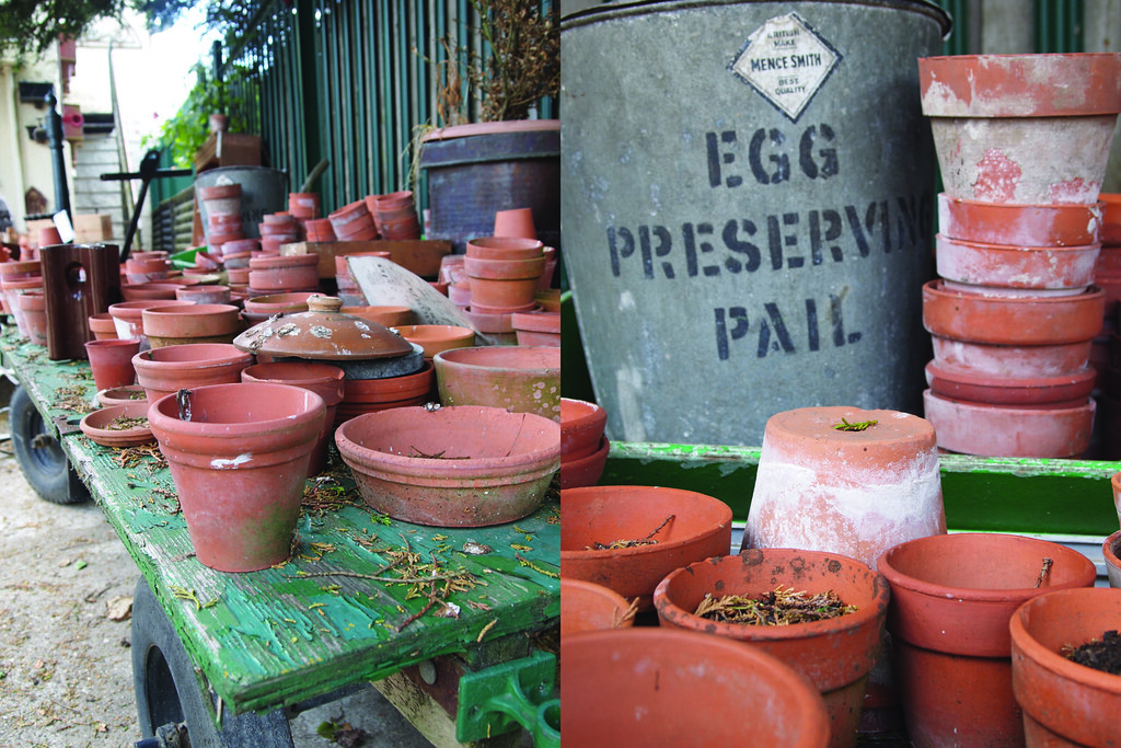 terracota pots