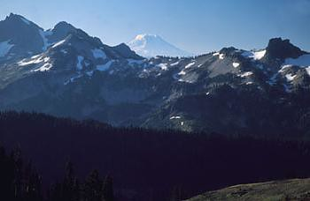 Mount Adams, as seen from Camp Muir, 10,000'