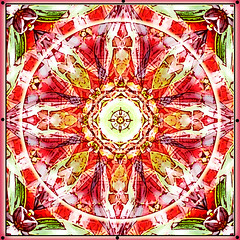 garden spirit mandala (SueO'Kieffe) Tags: nature digital photoshop mandala spirituality
