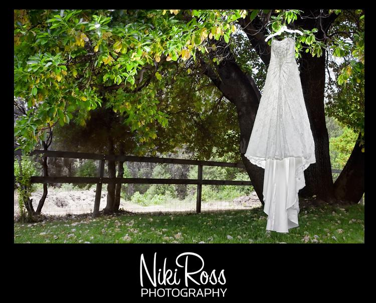 Dress-Tree