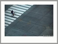 crossroad (b i s w a j i t) Tags: street bicycle crossing geometry simple arialshot