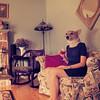 365/185 - Modern Day Cynocephali I (RachelMarieSmith) Tags: cute photography corgi pembrokewelshcorgi explore legends fairytales explored cynocephali rachelmariesmith
