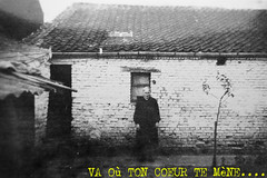 Tao wallon (andrefromont/fernandomort) Tags: arbuste fromarchives fernandomort andrfromont withlithium