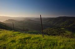 Endless (LifeLover4) Tags: california usa nature sunrise fence landscape outdoors dawn oakland interestingness interesting hiking hike explore redwood barbedwirefence hucklebe