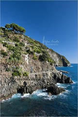 The coast of Cinque Terre | Italy (Stefan Cioata) Tags: blue sea summer vacation italy holiday tourism beautiful photography coast photo paradise italia image sale path liguria great stock tourist best lovers via explore shore terre getty destination cinqueterre top10 azzurro amore available cinque outstanding 5terre ligurian viadellamore touristical