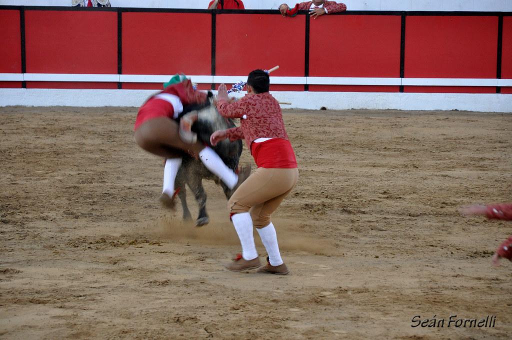 Modesto Festa Bullfights 2011 - 090