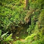 Sugong Coffins - - Sagada - Mountain Province 3-11 (79)