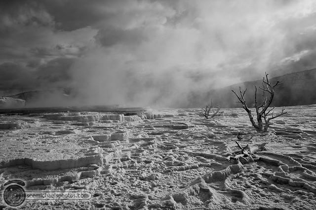 Yellowstone Day 2 52711 © Michael Klayman-019
