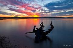 _MG_7134 (May Elin Aunli) Tags: sunset norway norge solnedgang grimstad fevik hasla haseltangen haslatangen