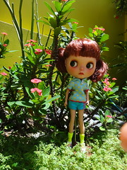 Pippa's adventure 3