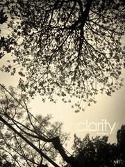 Ngo Quyen st (Ocobr10) Tags: hot st flickr viet ha nam noi ngo quyen tenten