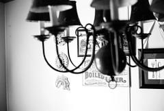 Dining Room (oh it's amanda) Tags: blackandwhite bw home 35mm blackwhite kodakbw400cn bw400cn kodakc41bw yashicaelectro35gt yashicagt