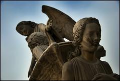 Escape (victor mendivil) Tags: peru nikon arte lima angeles religion cementerio sigma escultura tumba alas catolicismo sepulcro barriosaltos d80 ltytr1 18200mmf3563dcos cementeriopresbiteromatiasmaestro victormendivil cementeriopresbiteromaestro