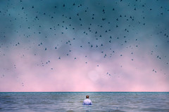 serene (Angela Mary Butler) Tags: pink blue portrait chicago beach birds flying lakemichigan il serene roommate challenge beautifulsky alexwilcox phlearn