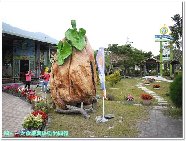 台東關山景點米國學校關山花海image049